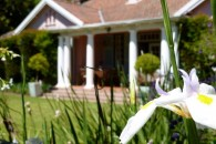 holiday-accommodation-constantia-cape-town2