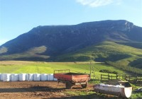 790 Ha stock and irrigation farm for sale as going concern